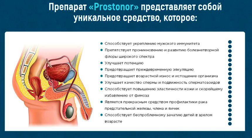 Капли Prostonor